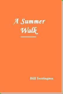 asummerwalk-softcover.jpg