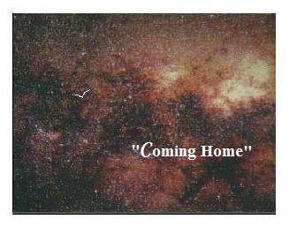 coming_home.jpg