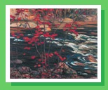 group-of-seven_red_maple.jpg